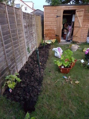 flowerbed.thumb.jpg.c7414f5debfb614c4ae09921988e4a2c.jpg