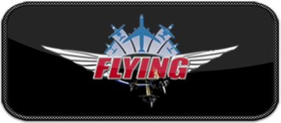 Flying Games.png