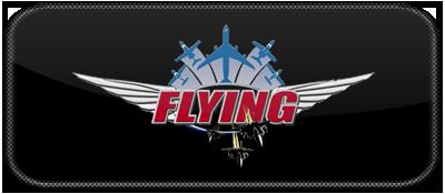 Flying Games LOGO.png