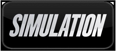 Simulation  LOGO.png