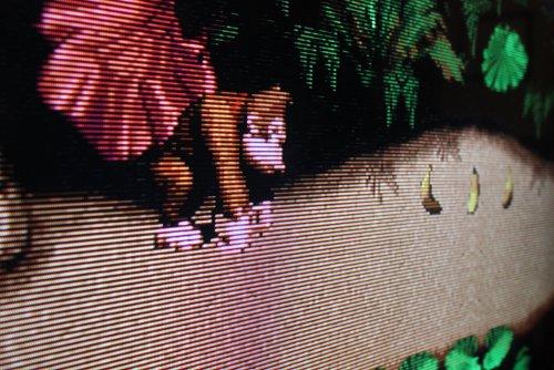 Donkey_Kong_RetroArch.thumb.JPG.a0f7a7f2b410989113d10b108abd1f8f.JPG