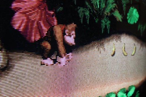 Donkey_Kong_SNES.thumb.JPG.197257f71227684bf908011a7f1604c1.JPG