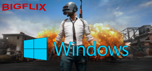 Microsoft windows.png