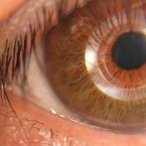 EyeQue