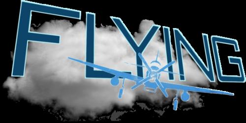 1397627302_FlyingGames.thumb.png.b3708fc1e37b6afc58591346d90036a8.png